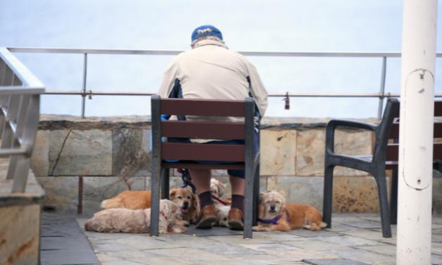 Truffe agli anziani a Bologna: come difendersi